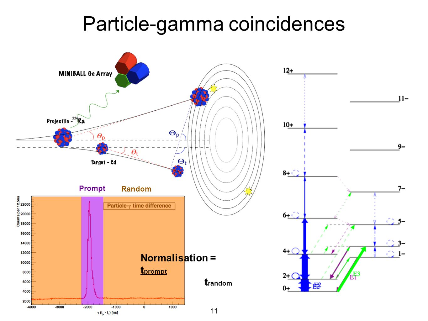 Particle-gamma coincidences