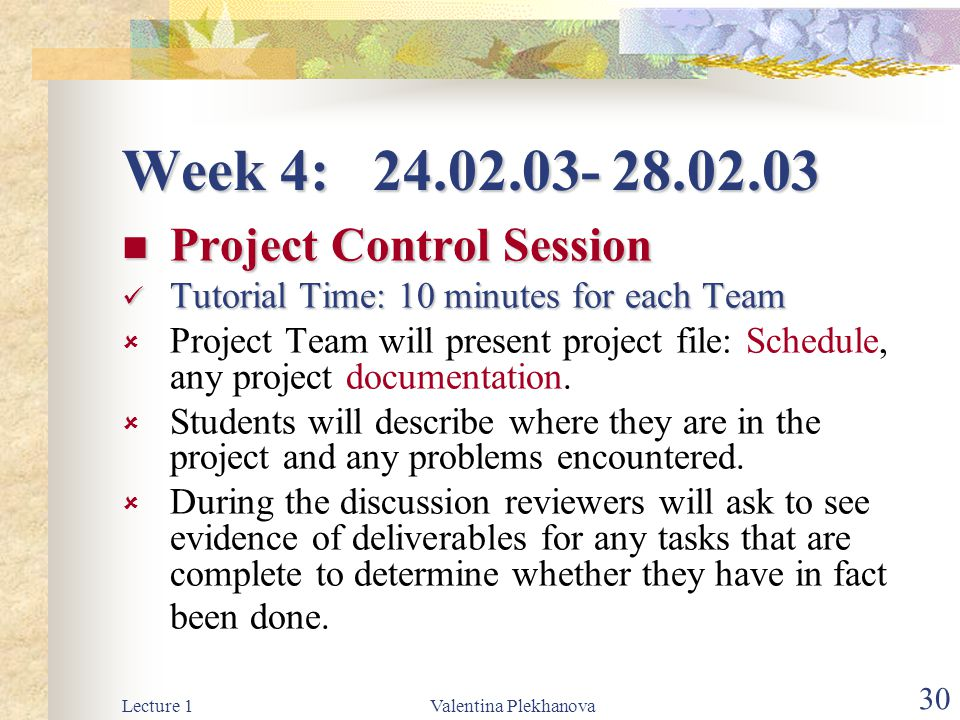 Week 4: 24.02.03- 28.02.03 Project Control Session