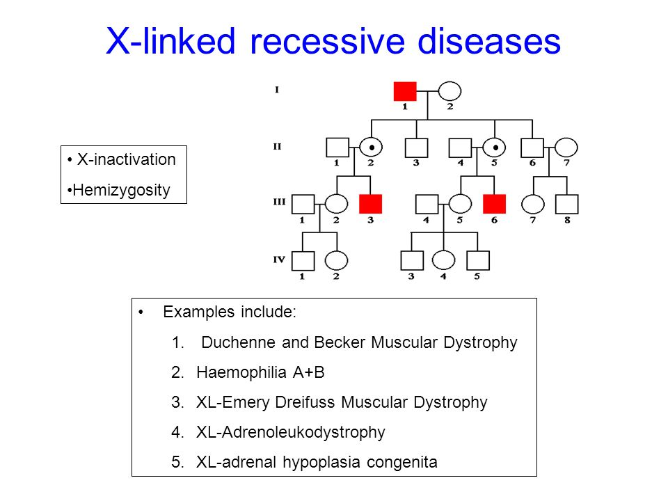 X-linked recessive diseases