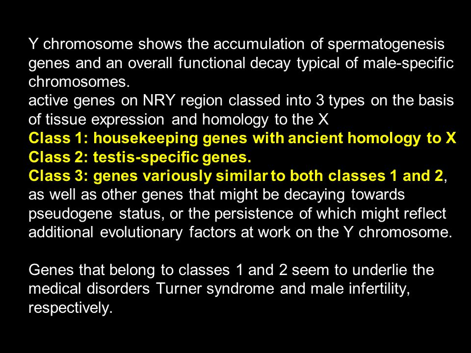 Y chromosome shows the accumulation of spermatogenesis genes and an overall functional decay typical of male-specific chromosomes. active genes on NRY region classed into 3 types on the basis of tissue expression and homology to the X Class 1: housekeeping genes with ancient homology to X Class 2: testis-specific genes. Class 3: genes variously similar to both classes 1 and 2, as well as other genes that might be decaying towards pseudogene status, or the persistence of which might reflect additional evolutionary factors at work on the Y chromosome. Genes that belong to classes 1 and 2 seem to underlie the medical disorders Turner syndrome and male infertility, respectively.