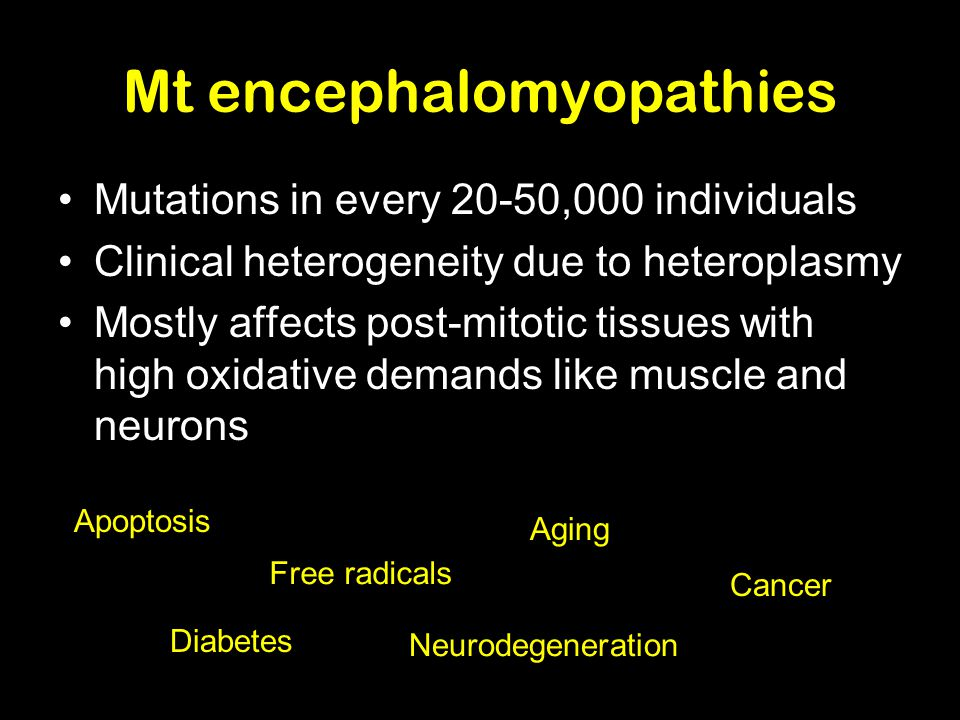 Mt encephalomyopathies