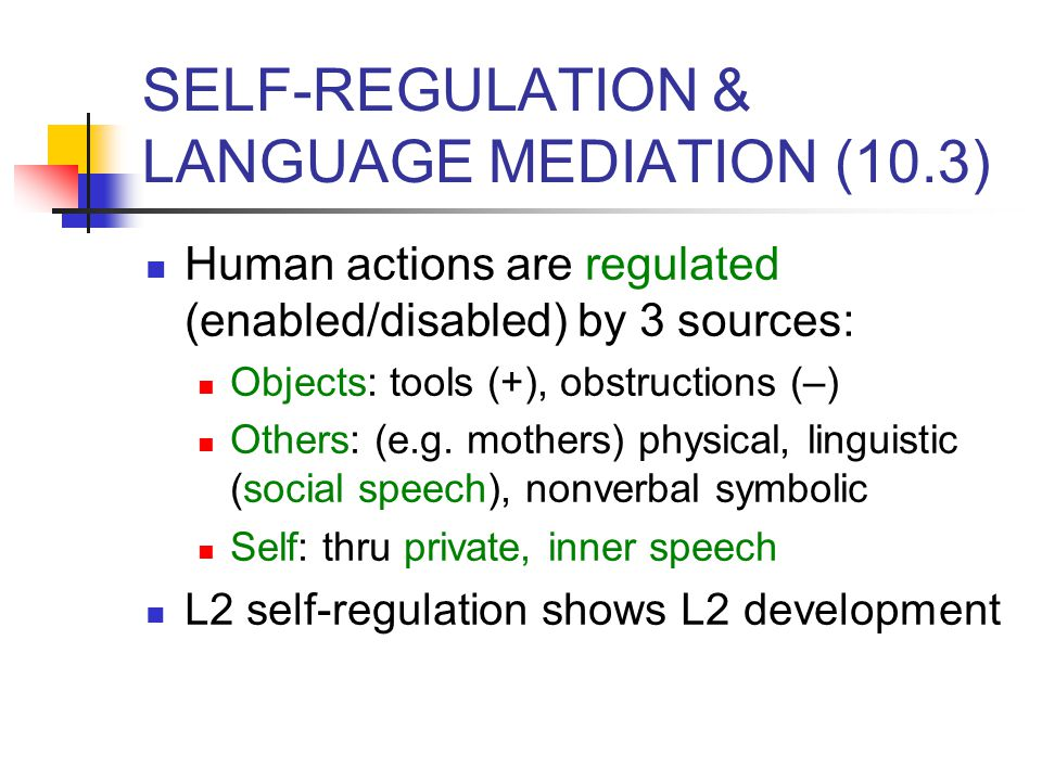 SELF-REGULATION & LANGUAGE MEDIATION (10.3)