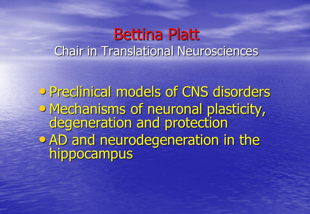 Bettina Platt Chair in Translational Neurosciences
