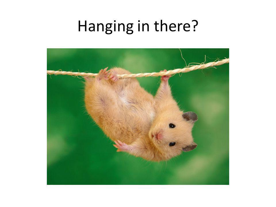 Hanging in there