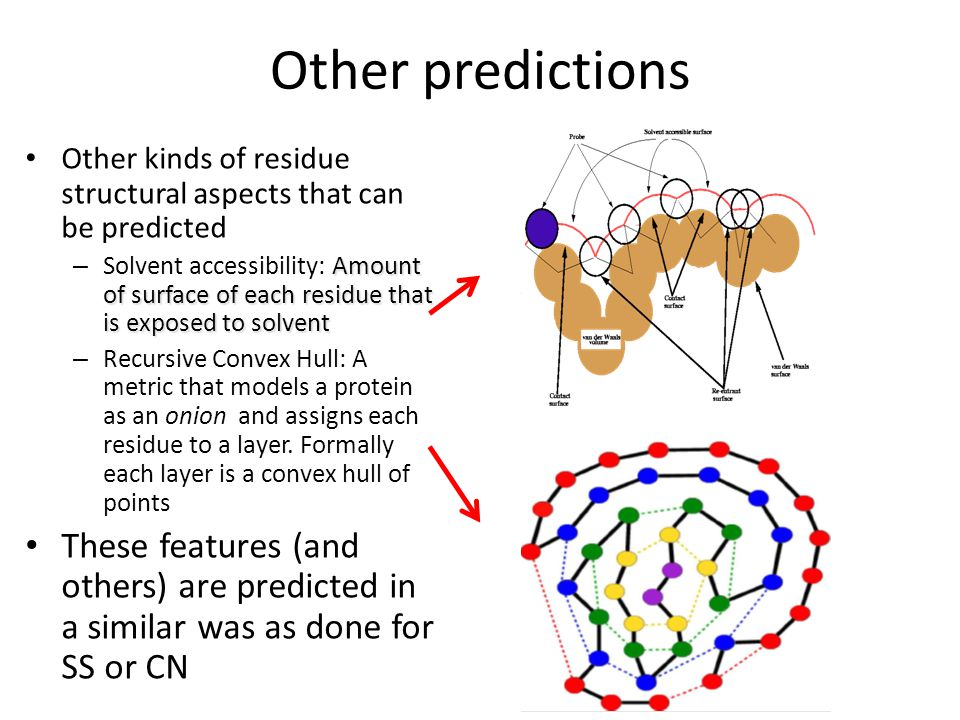 Other predictions Other kinds of residue structural aspects that can be predicted.
