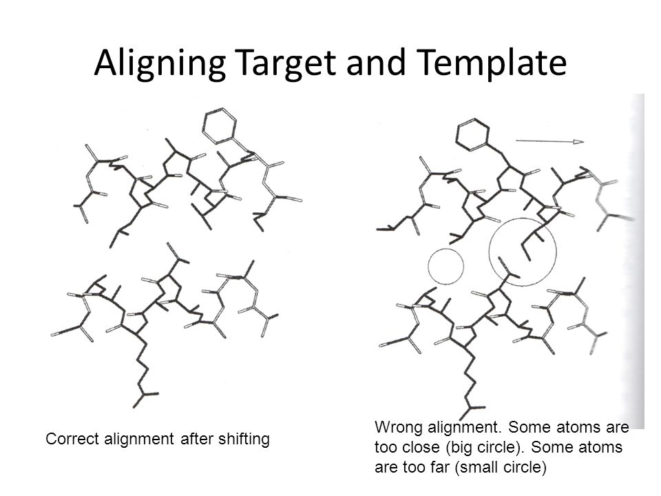 Aligning Target and Template