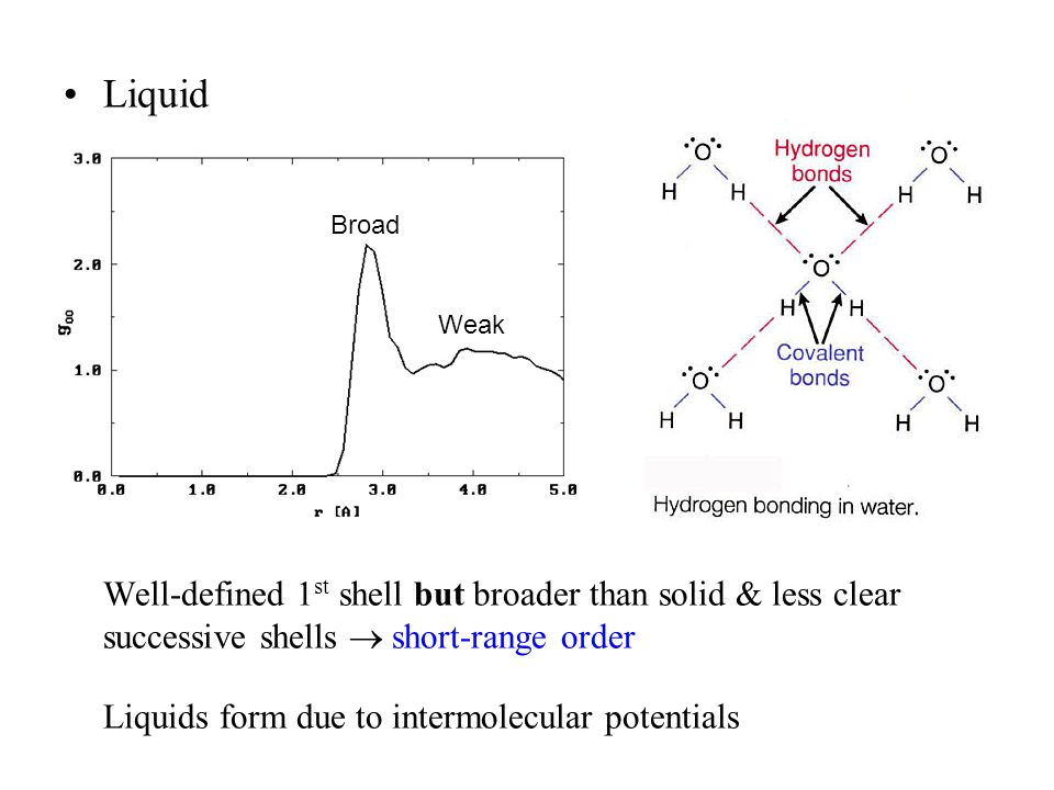 Liquid Well-defined 1st shell but broader than solid & less clear successive shells  short-range order.
