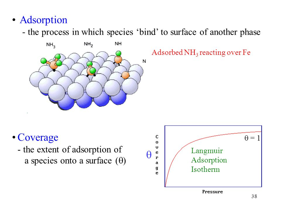 Adsorption - the process in which species 'bind' to surface of another phase. Adsorbed NH3 reacting over Fe.