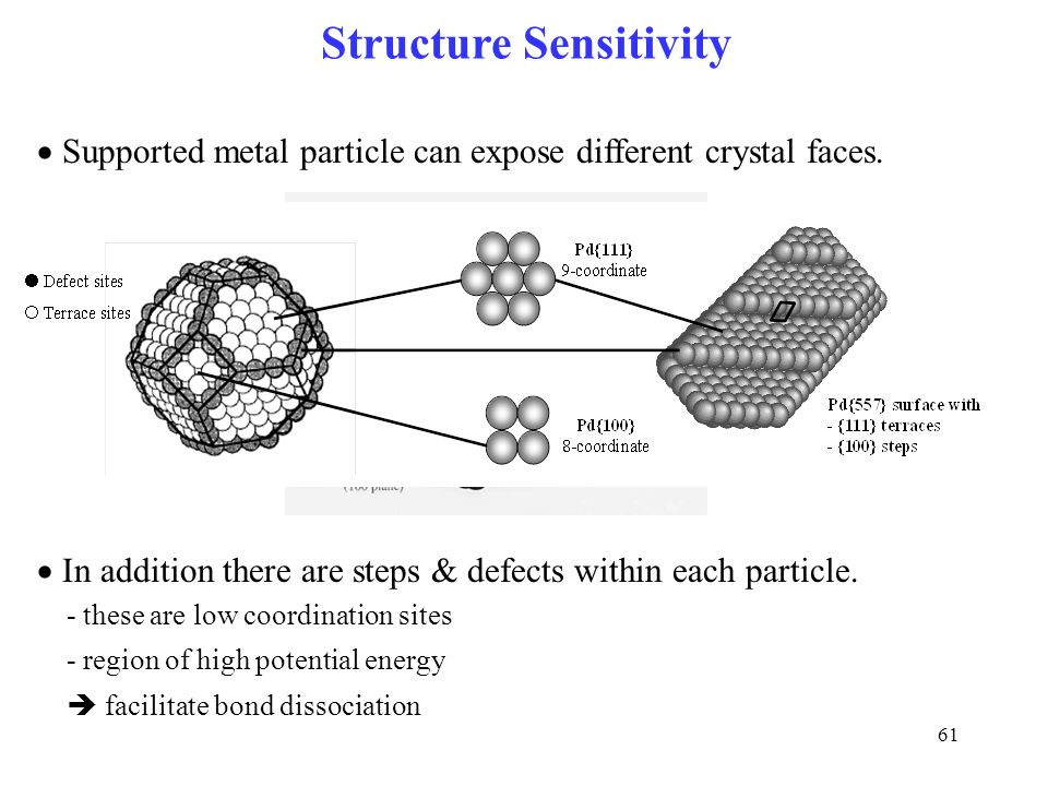 Structure Sensitivity