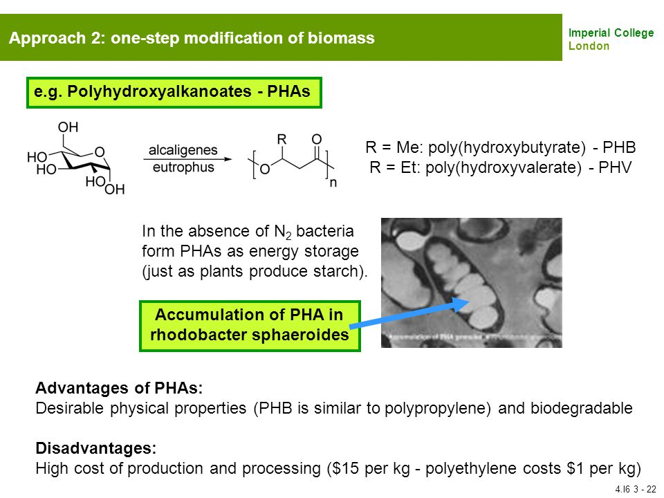 Accumulation of PHA in rhodobacter sphaeroides