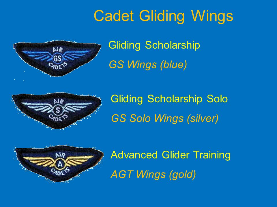Cadet Gliding Wings Gliding Scholarship GS Wings (blue)