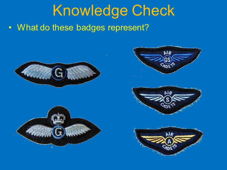 Knowledge Check What do these badges represent