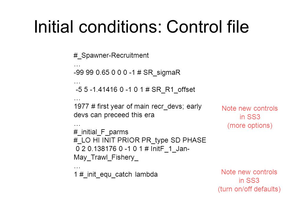Initial conditions: Control file