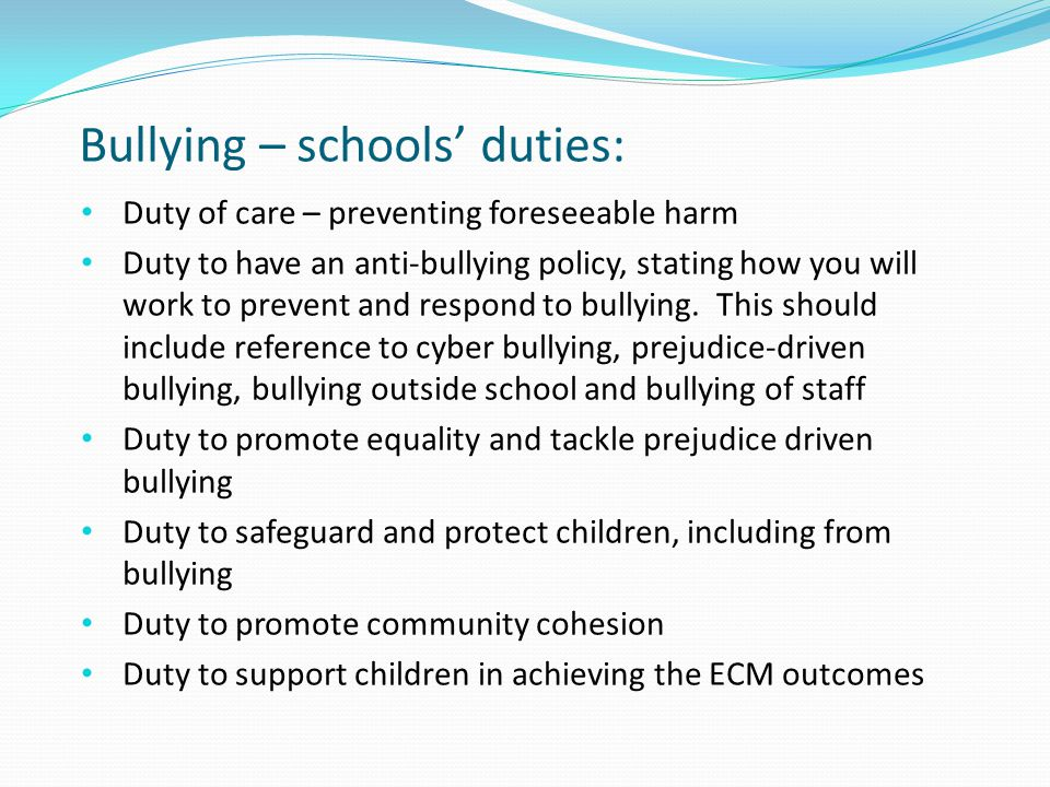 Bullying – schools' duties: