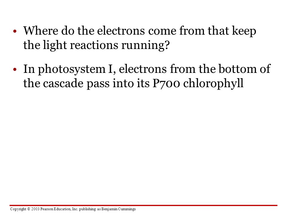 Where do the electrons come from that keep the light reactions running