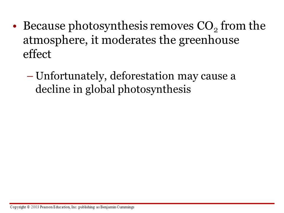 Because photosynthesis removes CO2 from the atmosphere, it moderates the greenhouse effect