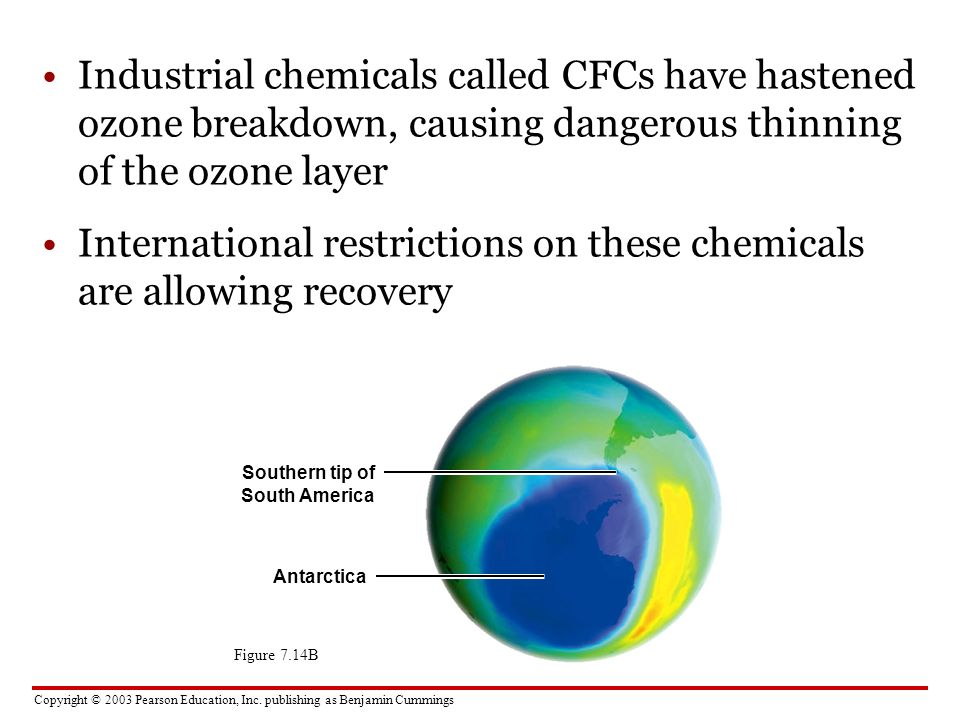 International restrictions on these chemicals are allowing recovery