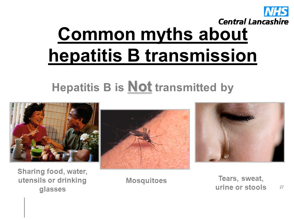 Common myths about hepatitis B transmission