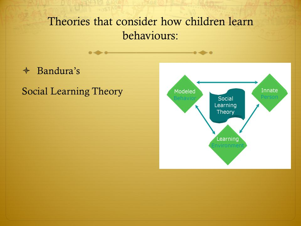 Theories that consider how children learn behaviours: