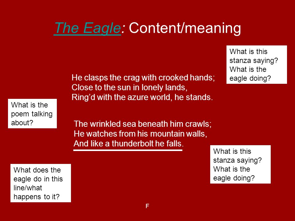 The Eagle: Content/meaning