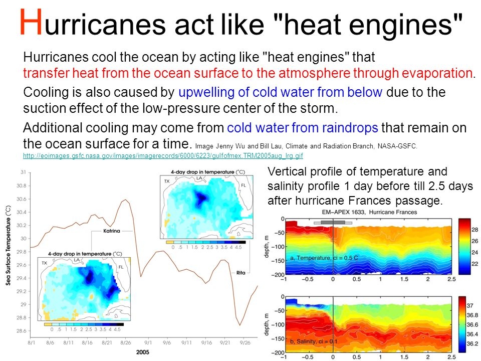 Hurricanes act like heat engines
