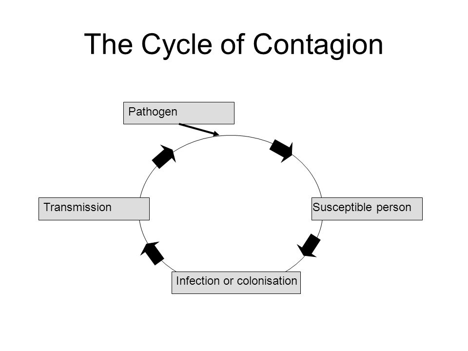 The Cycle of Contagion Susceptible person Infection or colonisation