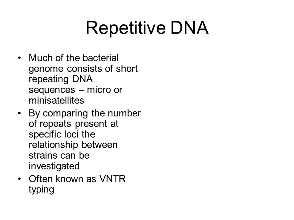 Repetitive DNA Much of the bacterial genome consists of short repeating DNA sequences – micro or minisatellites.