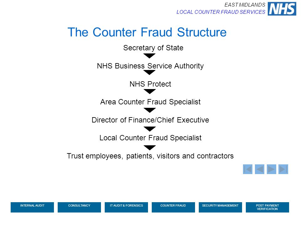 The Counter Fraud Structure