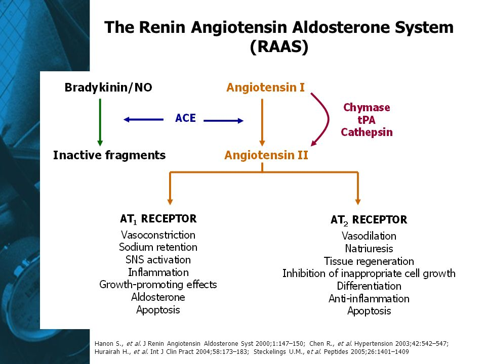 The Renin Angiotensin Aldosterone System (RAAS)