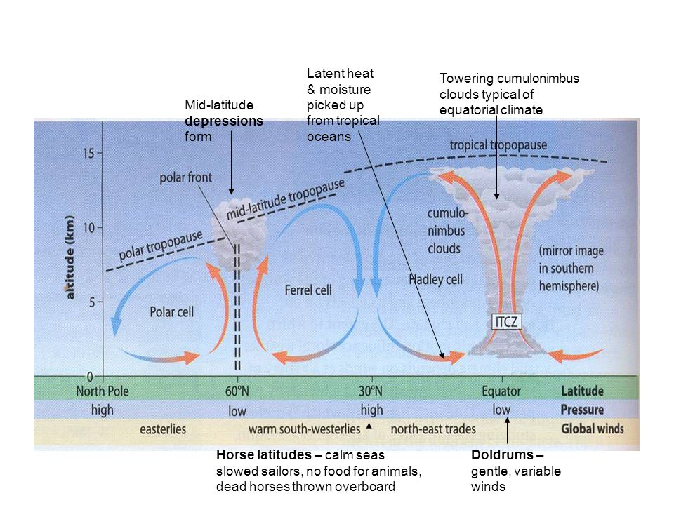 Latent heat & moisture picked up from tropical oceans