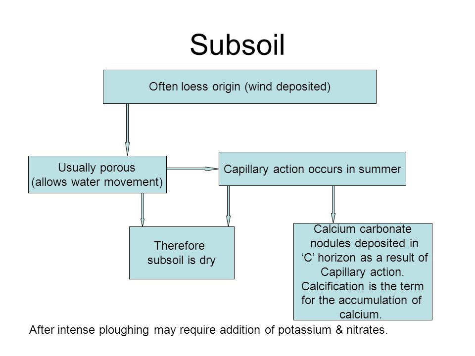 Subsoil Often loess origin (wind deposited) Usually porous