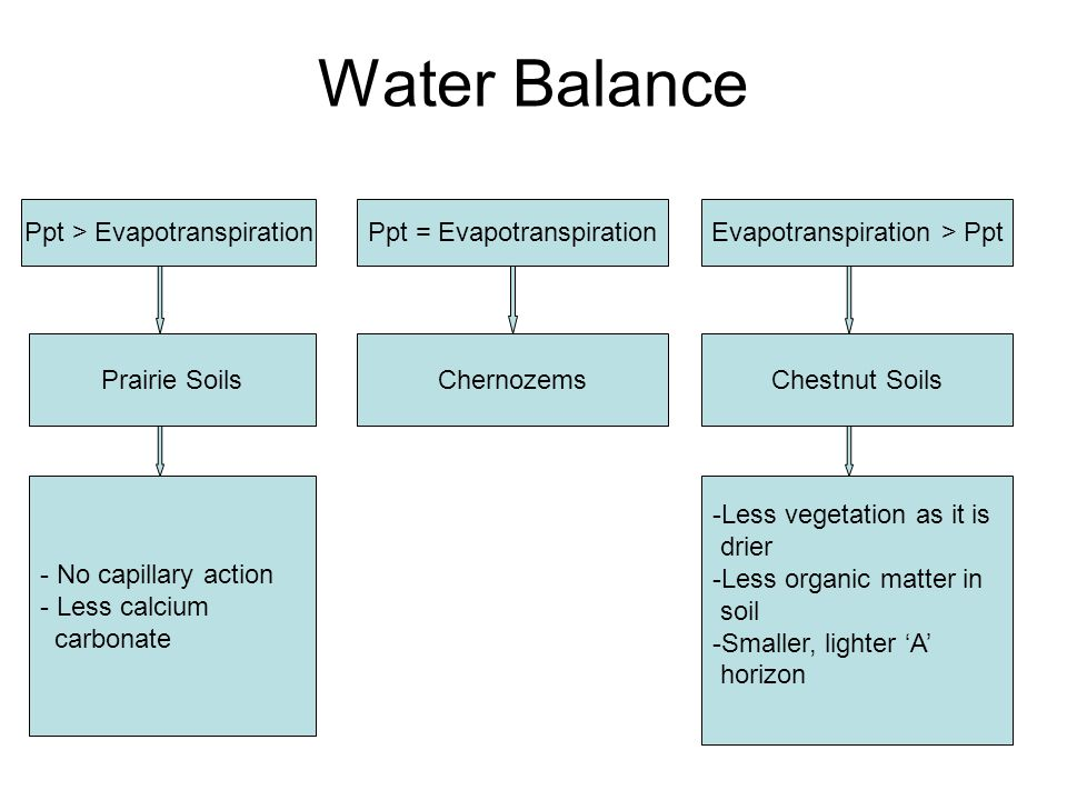 Water Balance Ppt > Evapotranspiration Ppt = Evapotranspiration