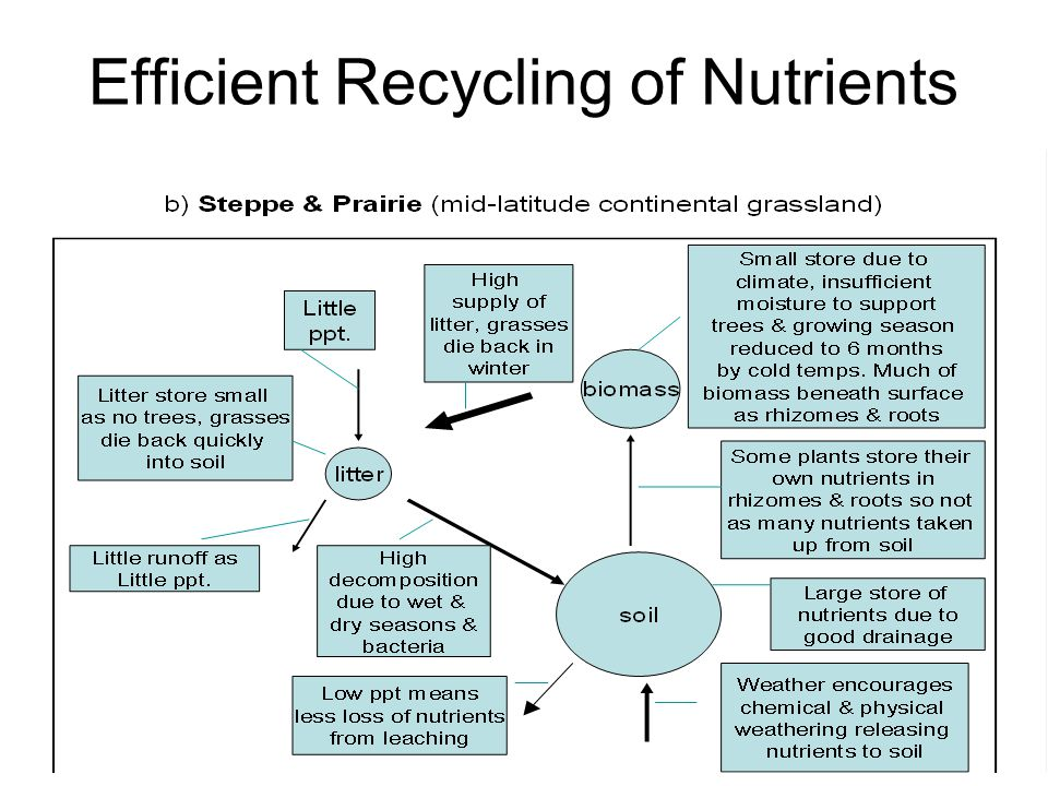 Efficient Recycling of Nutrients
