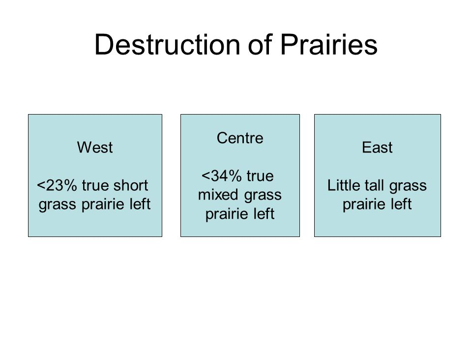 Destruction of Prairies