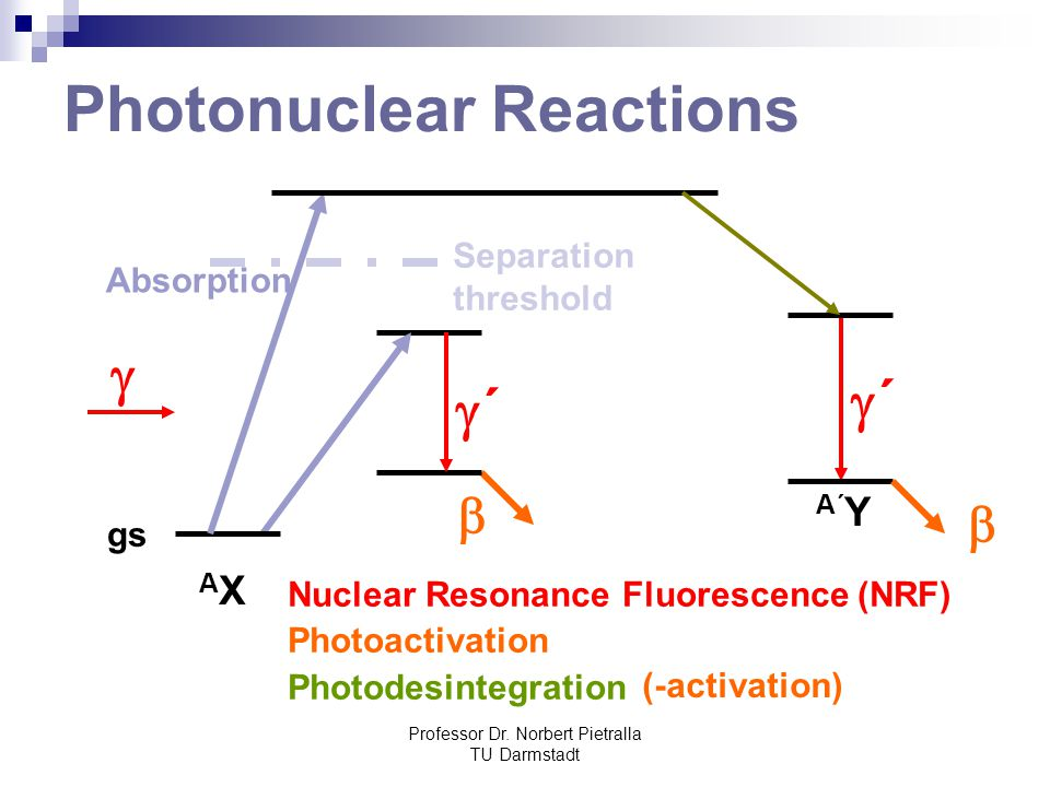 Photonuclear Reactions
