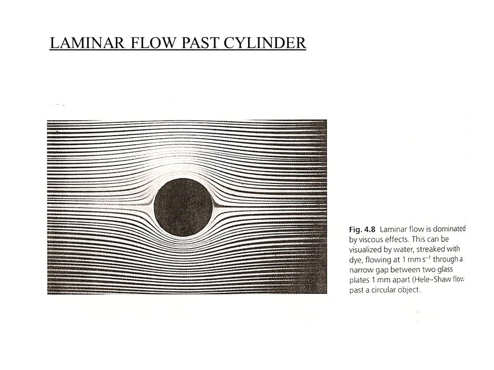 LAMINAR FLOW PAST CYLINDER