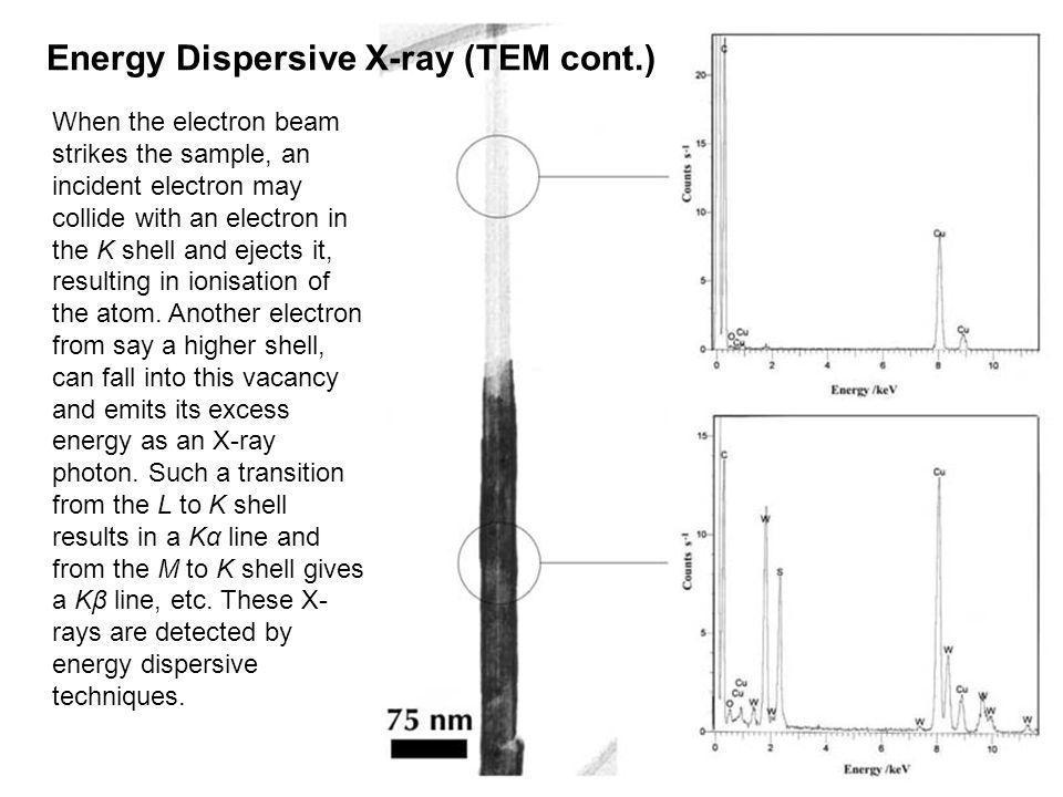 Energy Dispersive X-ray (TEM cont.)