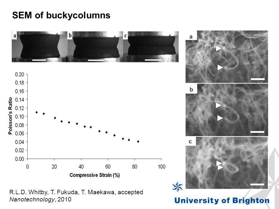SEM of buckycolumns R.L.D. Whitby, T. Fukuda, T. Maekawa, accepted Nanotechnology, 2010