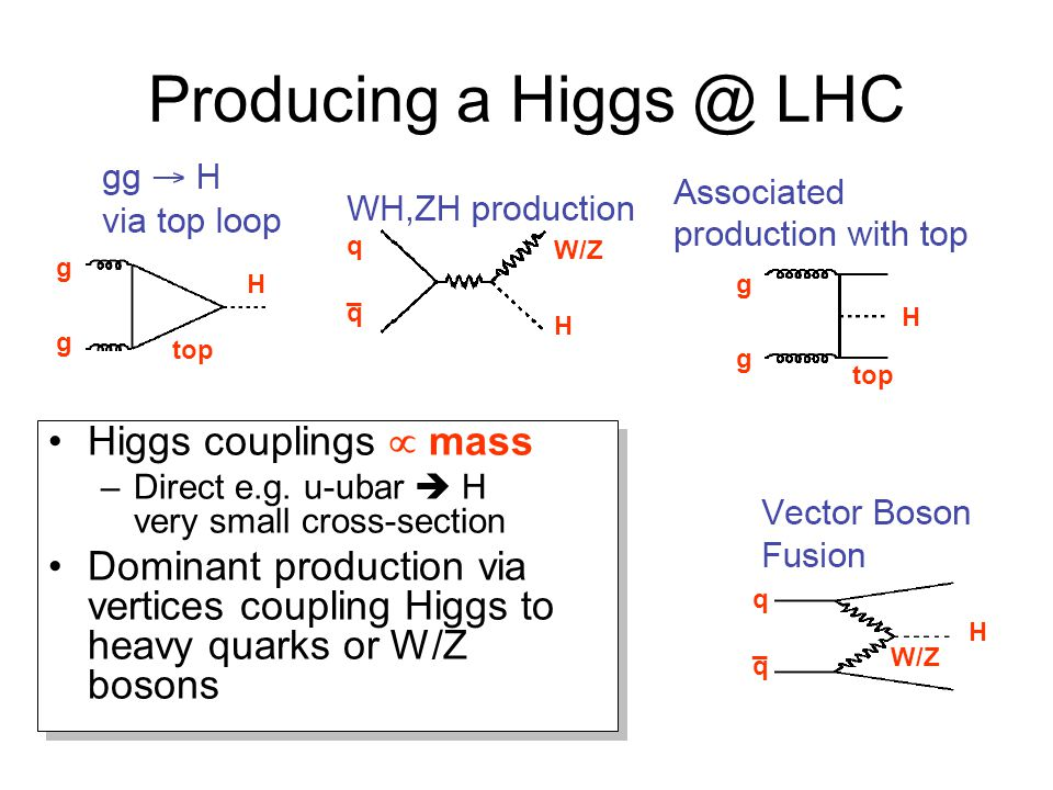 Producing a Higgs @ LHC Higgs couplings  mass