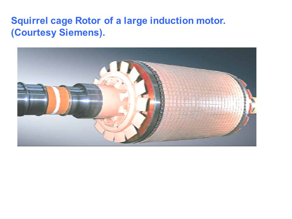 Squirrel cage Rotor of a large induction motor. (Courtesy Siemens).