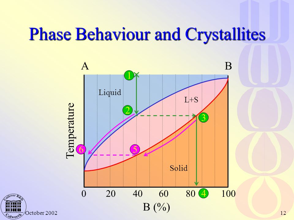 Phase Behaviour and Crystallites