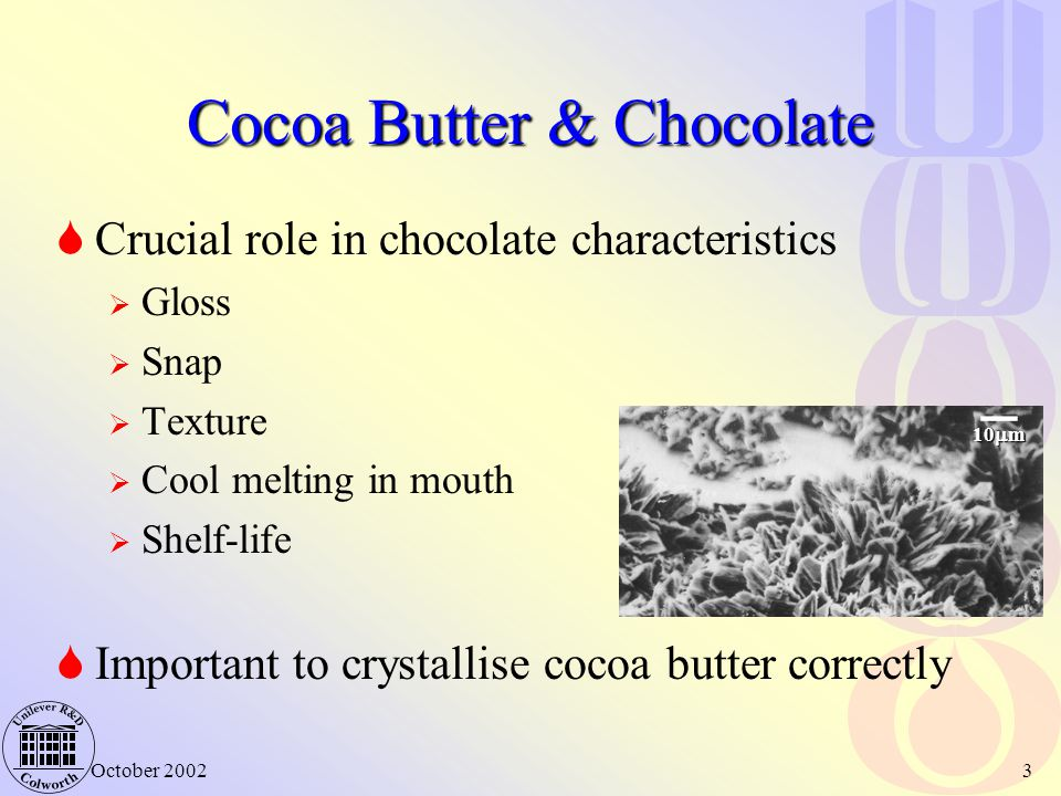 Cocoa Butter & Chocolate