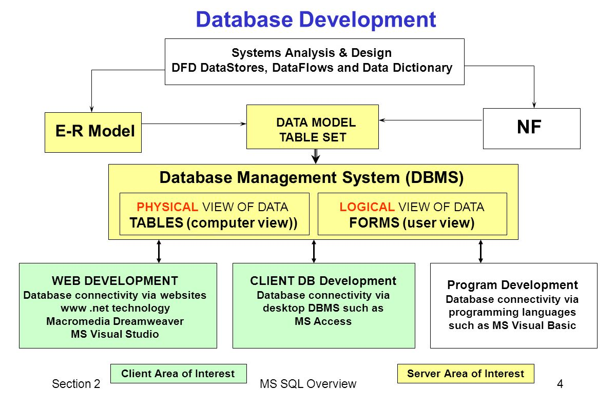 Database Development NF Database Management System (DBMS)