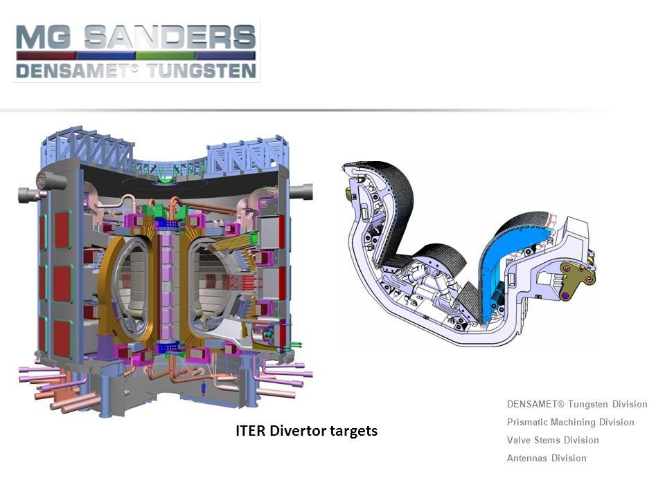 ITER Divertor targets