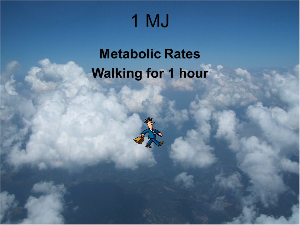 Metabolic Rates Walking for 1 hour