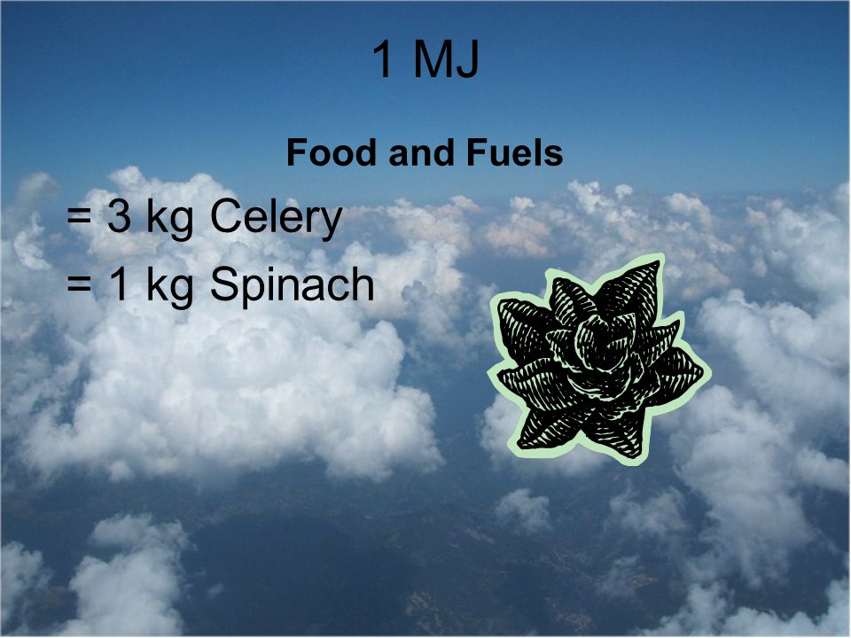 Food and Fuels = 3 kg Celery = 1 kg Spinach