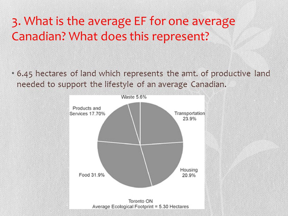 3. What is the average EF for one average Canadian