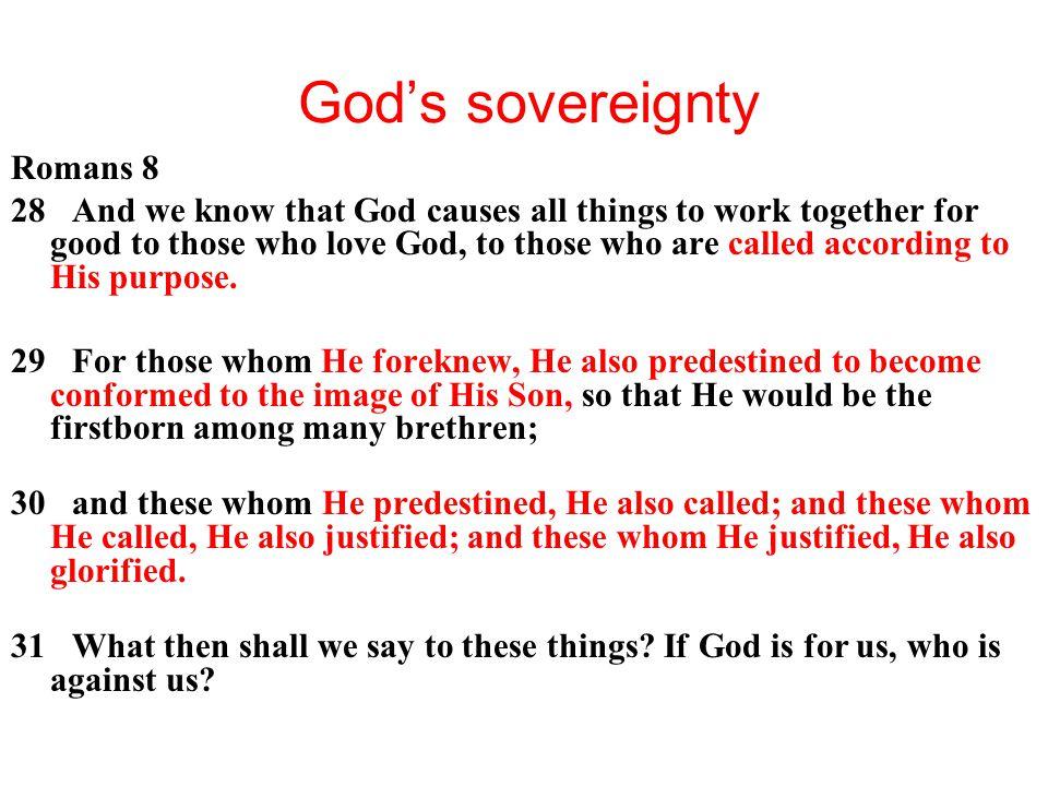 God's sovereignty Romans 8