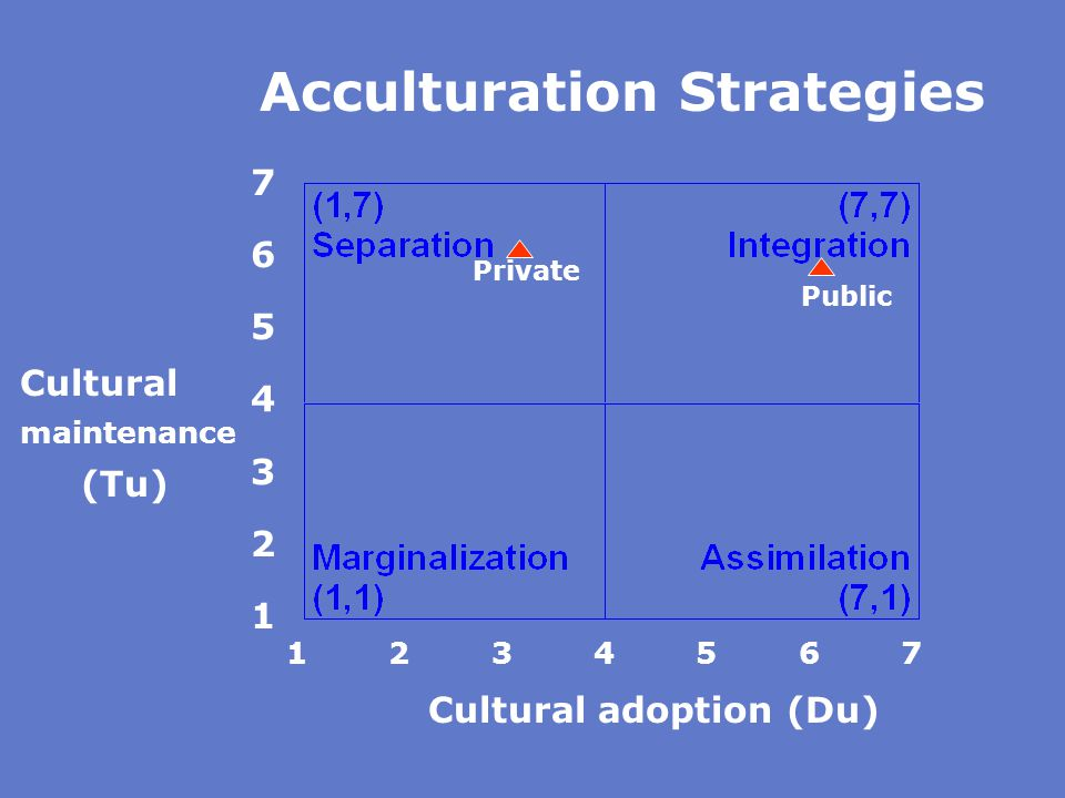 Acculturation Strategies