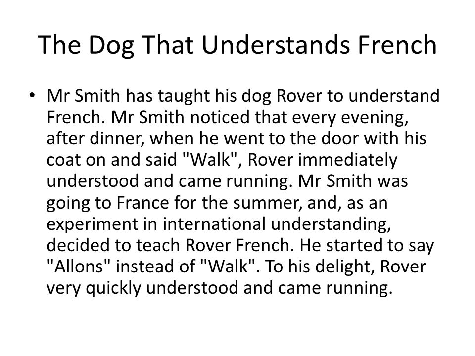 The Dog That Understands French